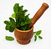 Mortar with mint. Mortar with green mint on a old white wooden background Royalty Free Stock Images
