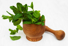 Mortar with mint. Mortar with green mint on a old white wooden background Royalty Free Stock Image