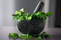 Mortar and mint leaves Stock Photos