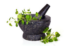 Mortar with oregano. Isolated on white background stock photos
