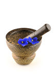 Mortar and pair blue flowers Stock Photo