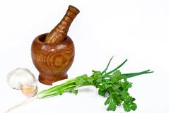Mortar and pestle. Mortar,pestle,garlics,scallion and Coriander Royalty Free Stock Photo