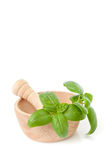 Mortar and Pestle with Basil Royalty Free Stock Photo