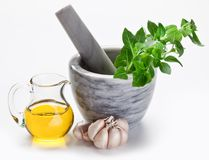 Mortar with pestle and basil herbs. Royalty Free Stock Photos