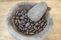 Mortar and Pestle with Cacao Royalty Free Stock Photos