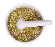 Mortar and pestle with dry herbs Stock Image