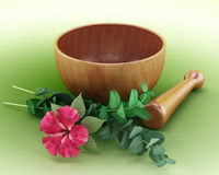 Mortar, pestle and flower isolated on green background. 3D illustration Stock Image