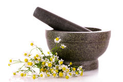 Mortar and pestle with flowers isolated Royalty Free Stock Image