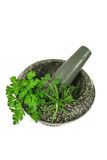 Mortar And Pestle with Fresh Herbs. Mortar and pestle with freshly picked garden herbs Stock Image