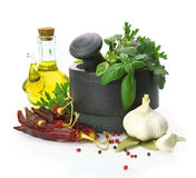 Mortar and pestle with fresh herbs Stock Image