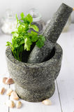 Mortar with Pestle Stock Images