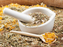Mortar, pestle and healing herbs Royalty Free Stock Photos