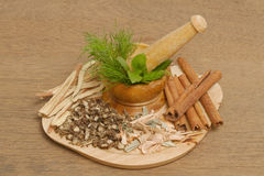 Mortar and pestle with herb Royalty Free Stock Photos