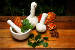 Mortar and Pestle with Herbs. Alternative medicine Stock Images