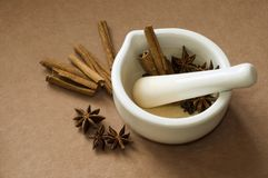 Mortar and pestle with herbs and spices. Royalty Free Stock Photo
