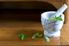 Mortar and pestle with leaves Stock Image