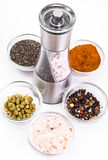 Mortar with pestle and mill for spices Royalty Free Stock Photos