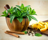 Mortar and pestle with mint. Royalty Free Stock Photos