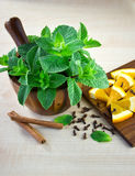 Mortar and pestle with mint. Royalty Free Stock Photography
