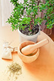 Mortar and pestle, myrtle. Royalty Free Stock Photos