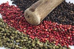 Mortar and pestle with pepper seeds Royalty Free Stock Photo