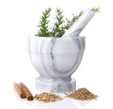 Mortar And Pestle With Rosemary Stock Images