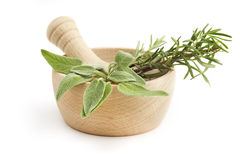 Mortar and pestle with sage and rosemary Stock Photos
