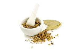 Mortar and pestle with spices Stock Images