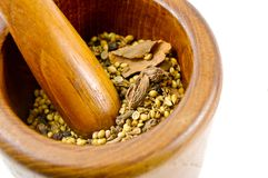 Mortar and pestle with spices Royalty Free Stock Photos