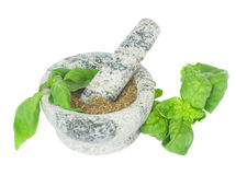 Mortar with powdered basil Stock Photos