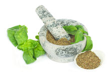Mortar with powdered basil herb Stock Image