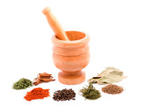 Mortar and spices. Mortar and herb spices studio isolated Stock Images