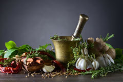 Mortar with spices and herbs. Stock Photo