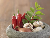 Mortar and spices Stock Photography