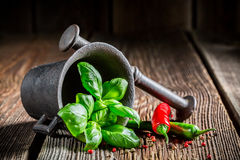 Mortar with tasty condiments Stock Photo