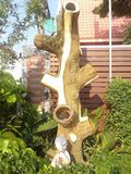 Mortar tree royalty free stock photography