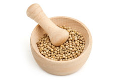 Mortar with white pepper Stock Images