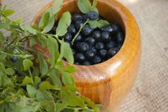 Mortar wirh blueberries and green leaves. Mortar with blueberries and generic vegetation Stock Photo