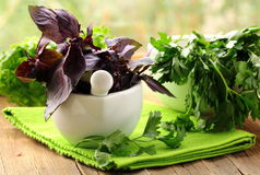 Mortar With Basil And Parsley Royalty Free Stock Photo