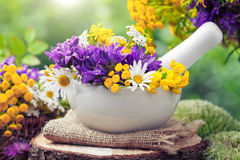 Free Mortar With Healing Herbs And Wild Flowers. Stock Photography - 56912242