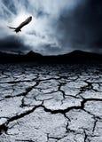 Morte e destruição Foto de Stock Royalty Free