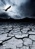 Morte e distruzione Fotografia Stock Libera da Diritti