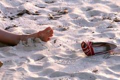 Morte na praia fotografia de stock royalty free