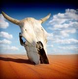 Morte nel deserto Immagini Stock Libere da Diritti