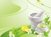 Mortero blanco con la maja y la taza con té verde stock de ilustración