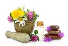 Mortero con las flores frescas y el petróleo esencial Imagen de archivo libre de regalías