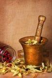 Mortero de bronce viejo con las hierbas y los escaramujos Foto de archivo libre de regalías