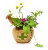 Mortero de madera con la cruz de la farmacia y las hierbas frescas Fotos de archivo
