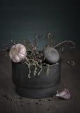 Mortero de piedra con las especias Foto de archivo