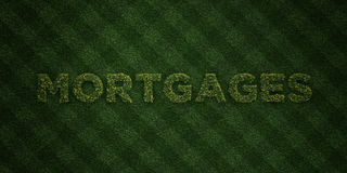 MORTGAGES - fresh Grass letters with flowers and dandelions - 3D rendered royalty free stock image